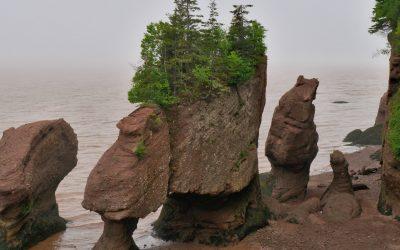 Bay of Fundy, de grootste getijdenverschillen ter wereld